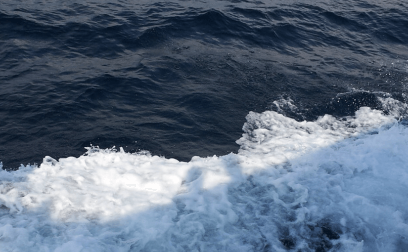 море в гаграх