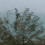Осень в Гаграх